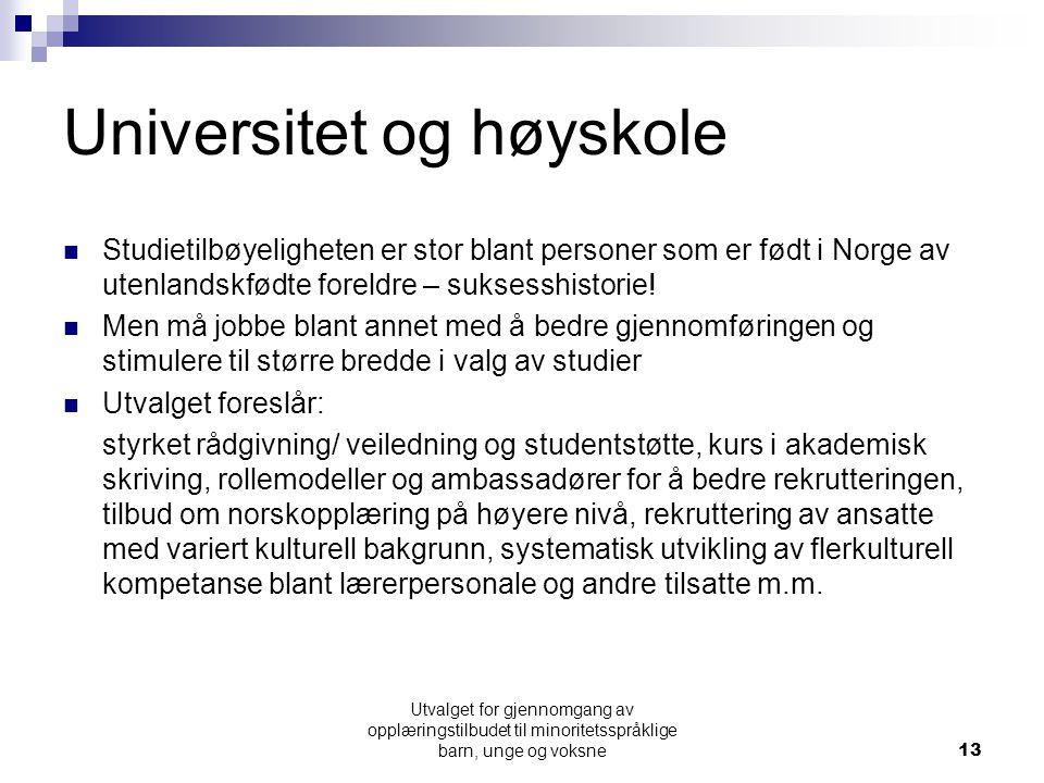 Universitet og høyskole  Studietilbøyeligheten er stor blant personer som er født i Norge av utenlandskfødte foreldre – suksesshistorie.