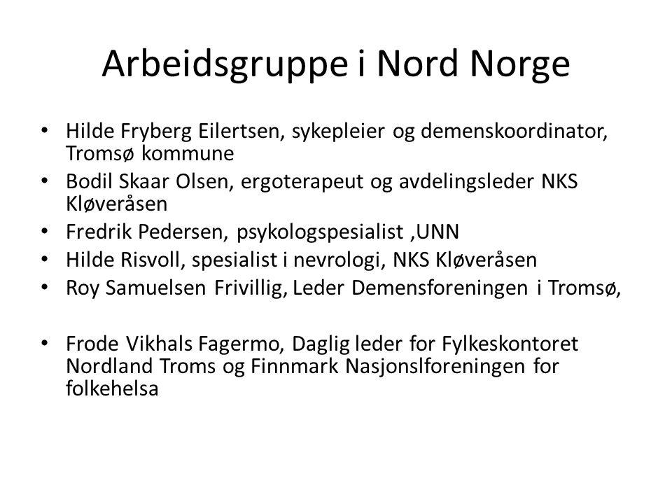 Arbeidsgruppe i Nord Norge • Hilde Fryberg Eilertsen, sykepleier og demenskoordinator, Tromsø kommune • Bodil Skaar Olsen, ergoterapeut og avdelingsle