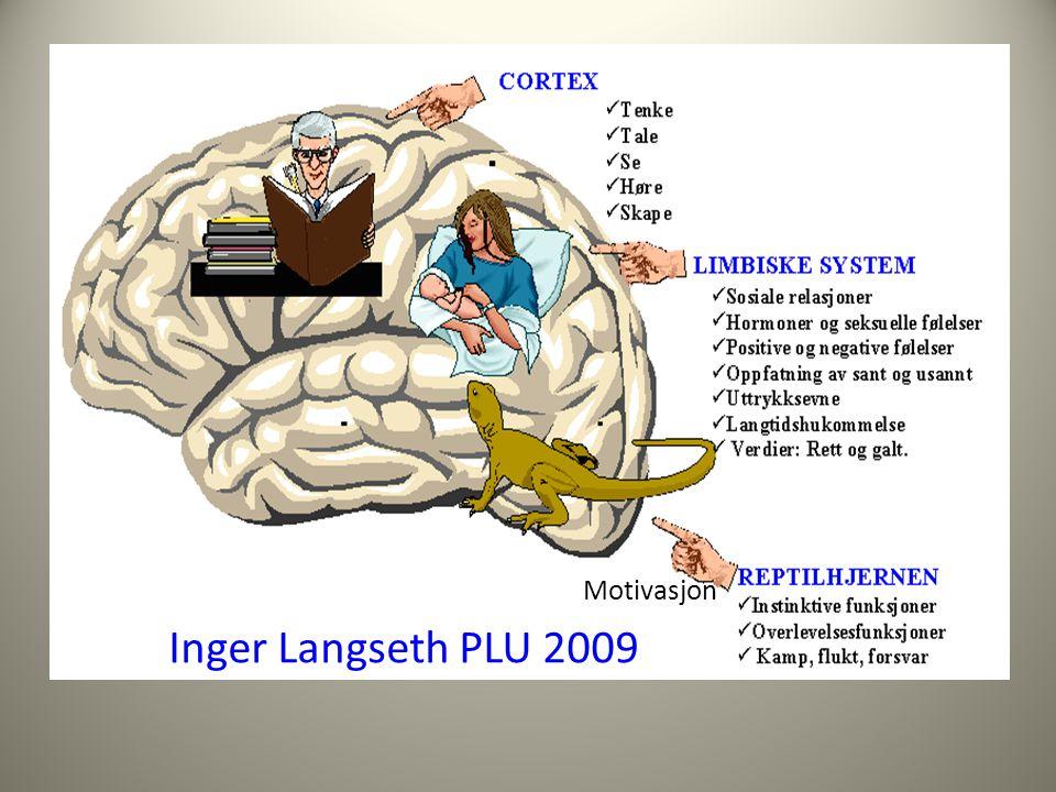 Motivasjon Inger Langseth PLU 2009