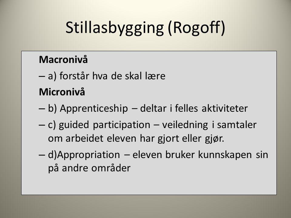 Stillasbygging (Rogoff) Macronivå – a) forstår hva de skal lære Micronivå – b) Apprenticeship – deltar i felles aktiviteter – c) guided participation – veiledning i samtaler om arbeidet eleven har gjort eller gjør.