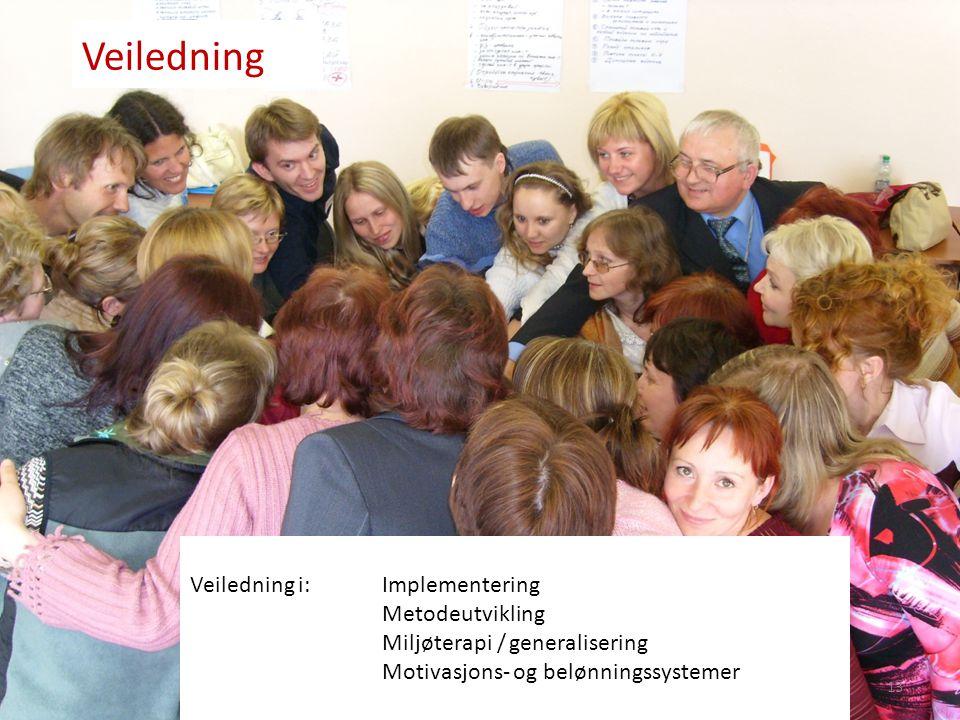13 Veiledning Veiledning i:Implementering Metodeutvikling Miljøterapi / generalisering Motivasjons- og belønningssystemer