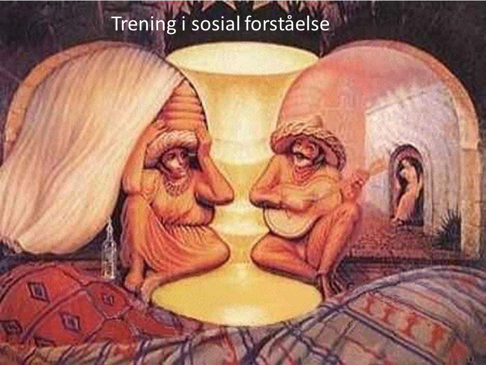 Trening i sosial forståelse