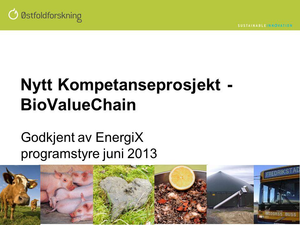 Nytt Kompetanseprosjekt - BioValueChain Godkjent av EnergiX programstyre juni 2013