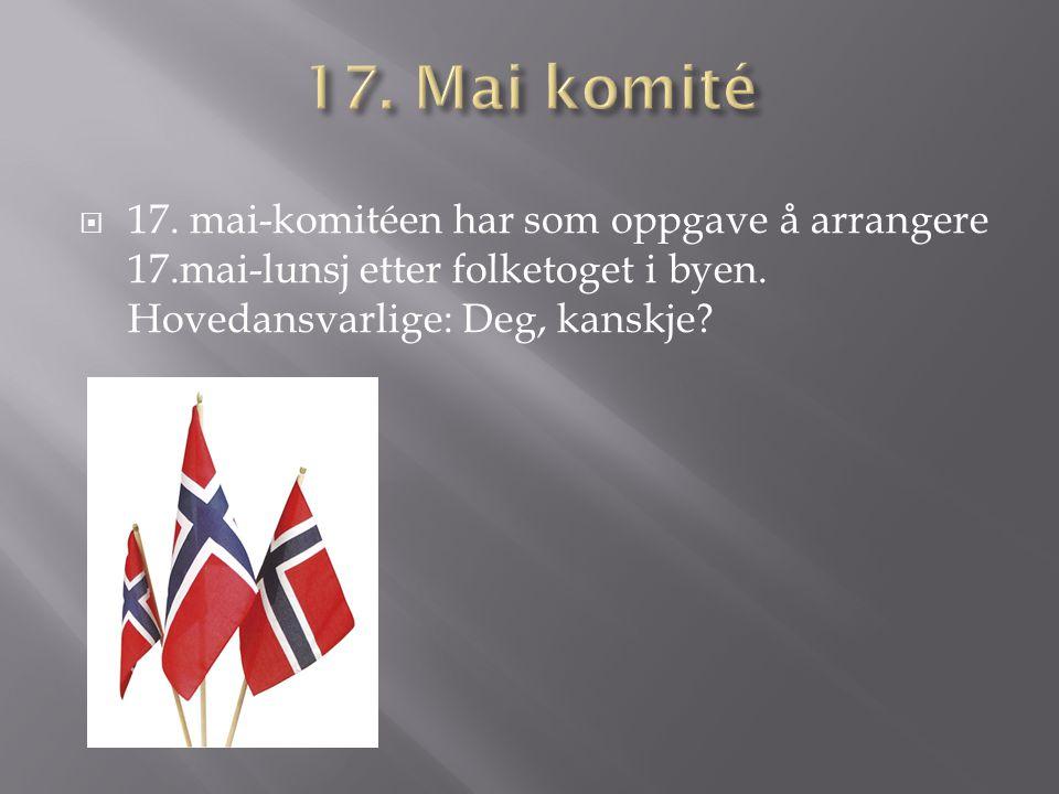  17. mai-komitéen har som oppgave å arrangere 17.mai-lunsj etter folketoget i byen. Hovedansvarlige: Deg, kanskje?