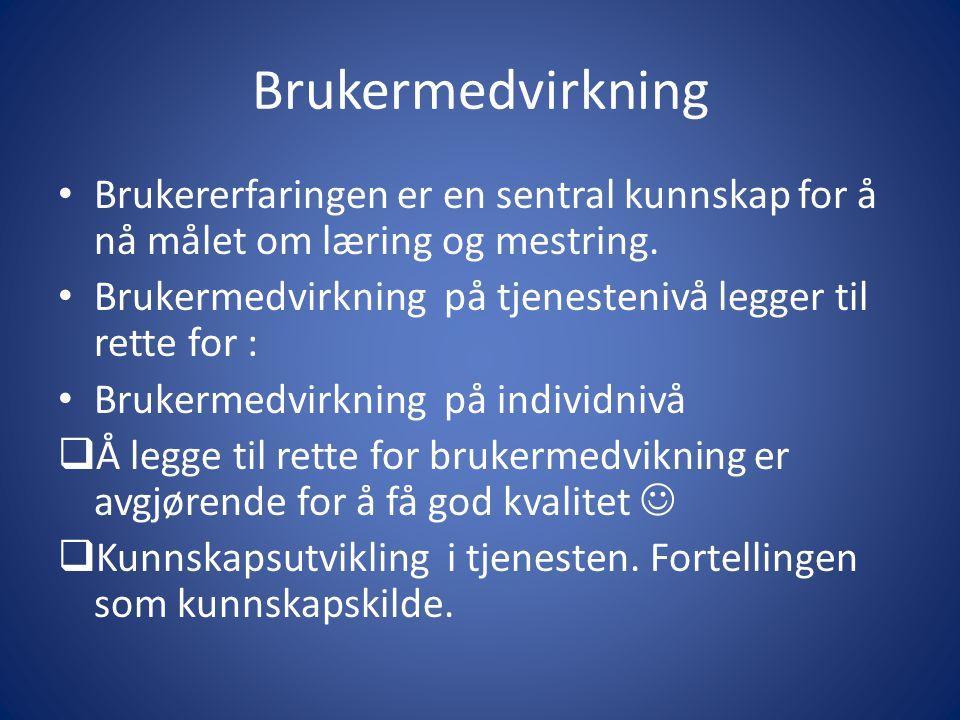 Strategisk plan • Oppdrag fra Helse Nord, mars 2011: 1.Beskrive status for dagens pasient-og pårørendeopplæring.