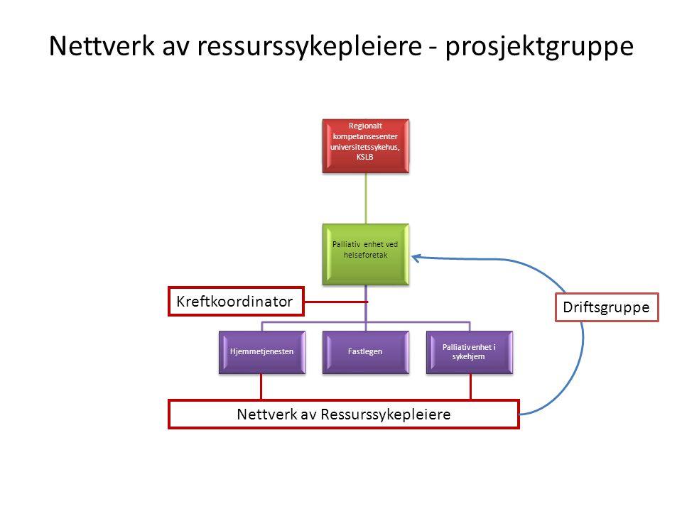 Nettverk av ressurssykepleiere - prosjektgruppe Kreftkoordinator Nettverk av Ressurssykepleiere Driftsgruppe