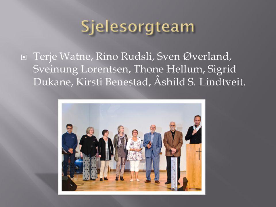  Terje Watne, Rino Rudsli, Sven Øverland, Sveinung Lorentsen, Thone Hellum, Sigrid Dukane, Kirsti Benestad, Åshild S. Lindtveit.
