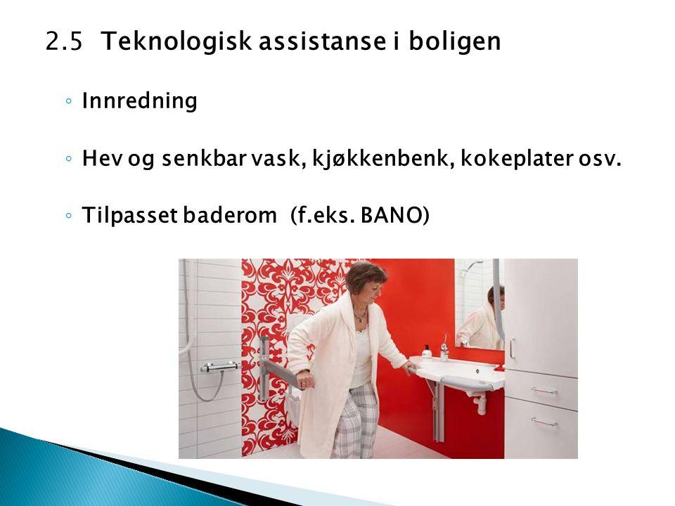 2.5 Teknologisk assistanse i boligen ◦ Innredning ◦ Hev og senkbar vask, kjøkkenbenk, kokeplater osv. ◦ Tilpasset baderom (f.eks. BANO)