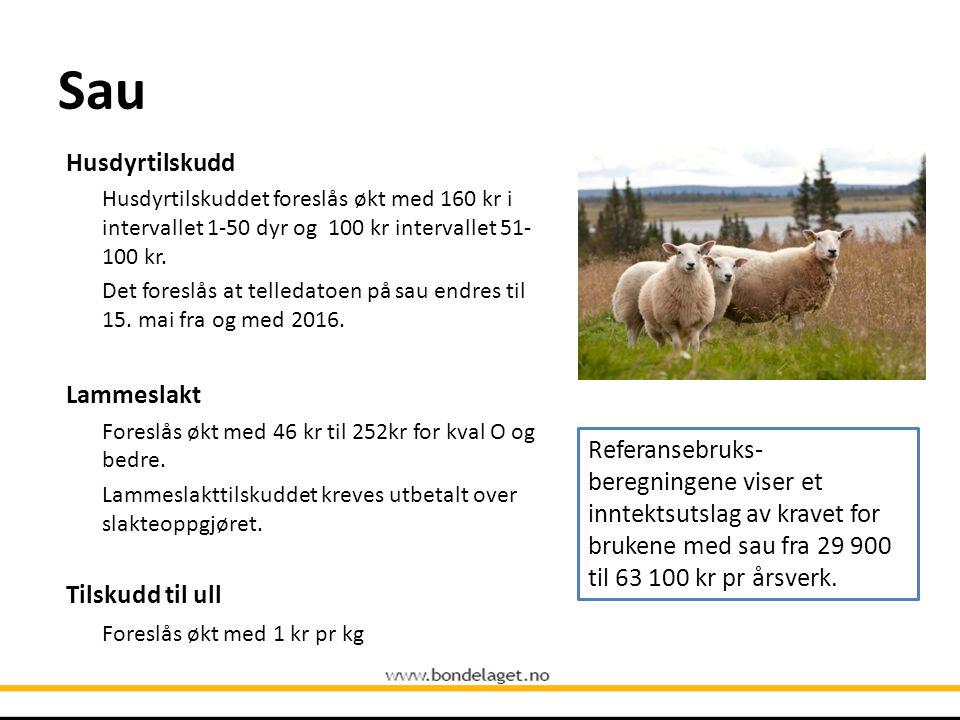 Sau Husdyrtilskudd Husdyrtilskuddet foreslås økt med 160 kr i intervallet 1-50 dyr og 100 kr intervallet 51- 100 kr. Det foreslås at telledatoen på sa