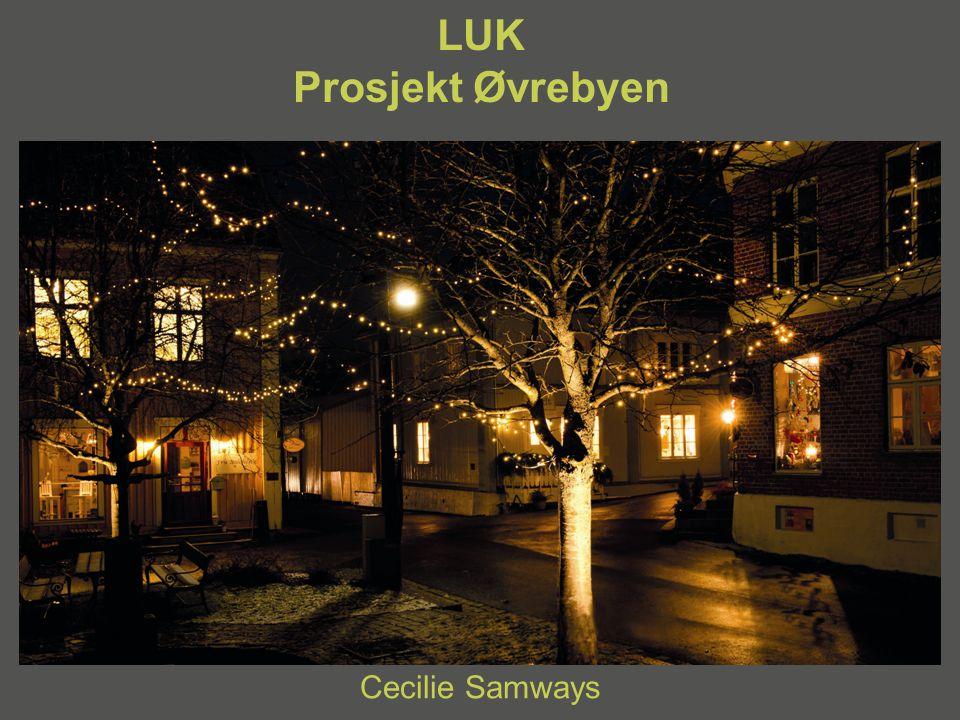 LUK Prosjekt Øvrebyen Cecilie Samways