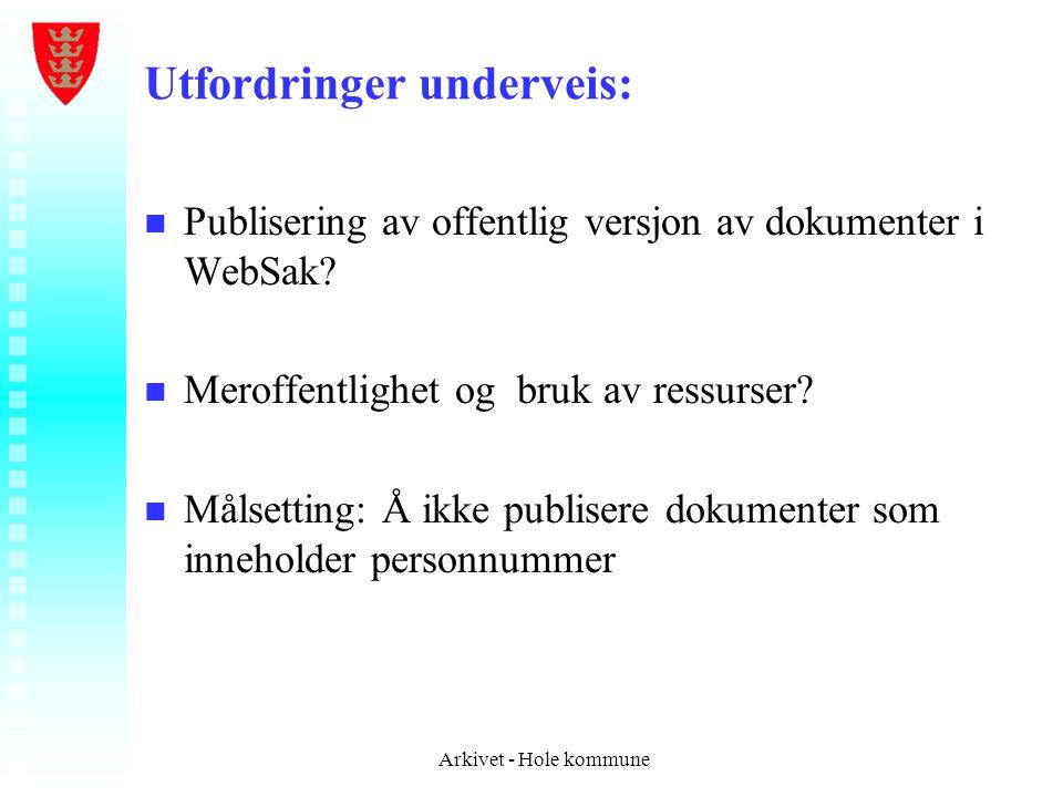 Utfordringer underveis: n n Publisering av offentlig versjon av dokumenter i WebSak? n n Meroffentlighet og bruk av ressurser? n n Målsetting: Å ikke