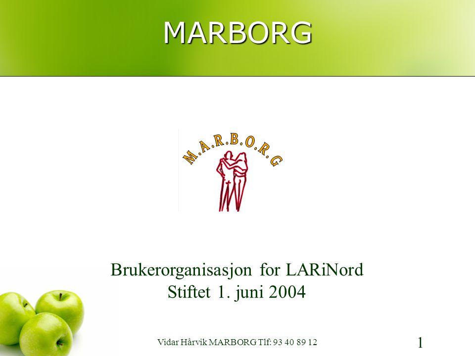 MARBORG 1 Brukerorganisasjon for LARiNord Stiftet 1.