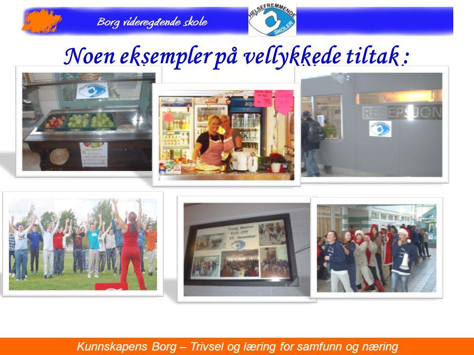 Noen eksempler på vellykkede tiltak : Kunnskapens Borg – Trivsel og læring for samfunn og næring.