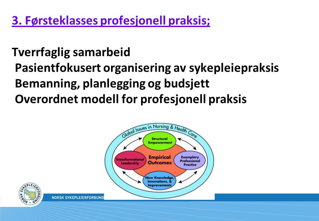 3. Førsteklasses profesjonell praksis; Tverrfaglig samarbeid Pasientfokusert organisering av sykepleiepraksis Bemanning, planlegging og budsjett Overo