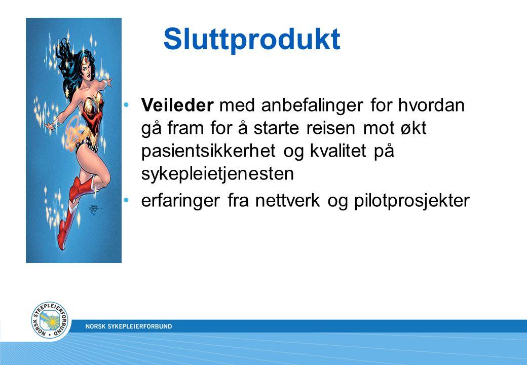 Sluttprodukt •Veileder med anbefalinger for hvordan gå fram for å starte reisen mot økt pasientsikkerhet og kvalitet på sykepleietjenesten •erfaringer fra nettverk og pilotprosjekter