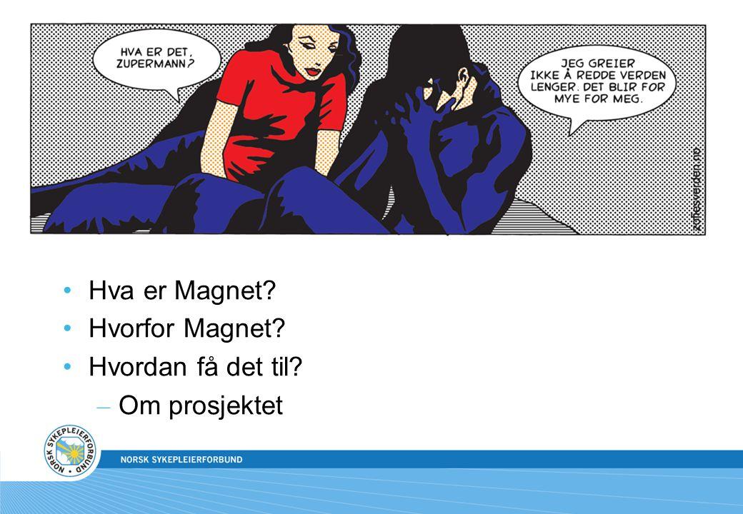 Kunnskapsmål •Hva er Magnet? •Hvorfor Magnet? •Hvordan få det til? – Om prosjektet