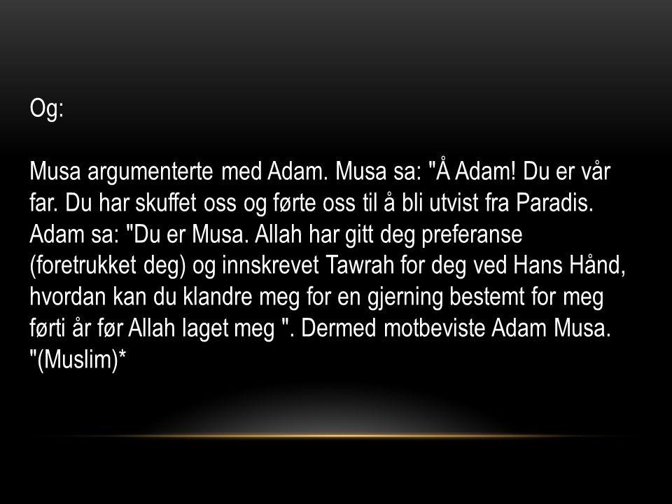Og: Musa argumenterte med Adam. Musa sa: Å Adam.