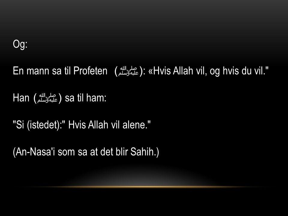 Og: En mann sa til Profeten ( ﷺ ) : «Hvis Allah vil, og hvis du vil. Han ( ﷺ ) sa til ham: Si (istedet): Hvis Allah vil alene. (An-Nasa i som sa at det blir Sahih.)