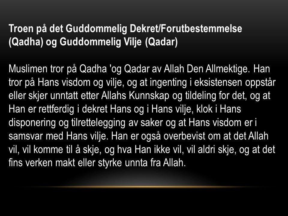 Troen på det Guddommelig Dekret/Forutbestemmelse (Qadha) og Guddommelig Vilje (Qadar) Muslimen tror på Qadha og Qadar av Allah Den Allmektige.