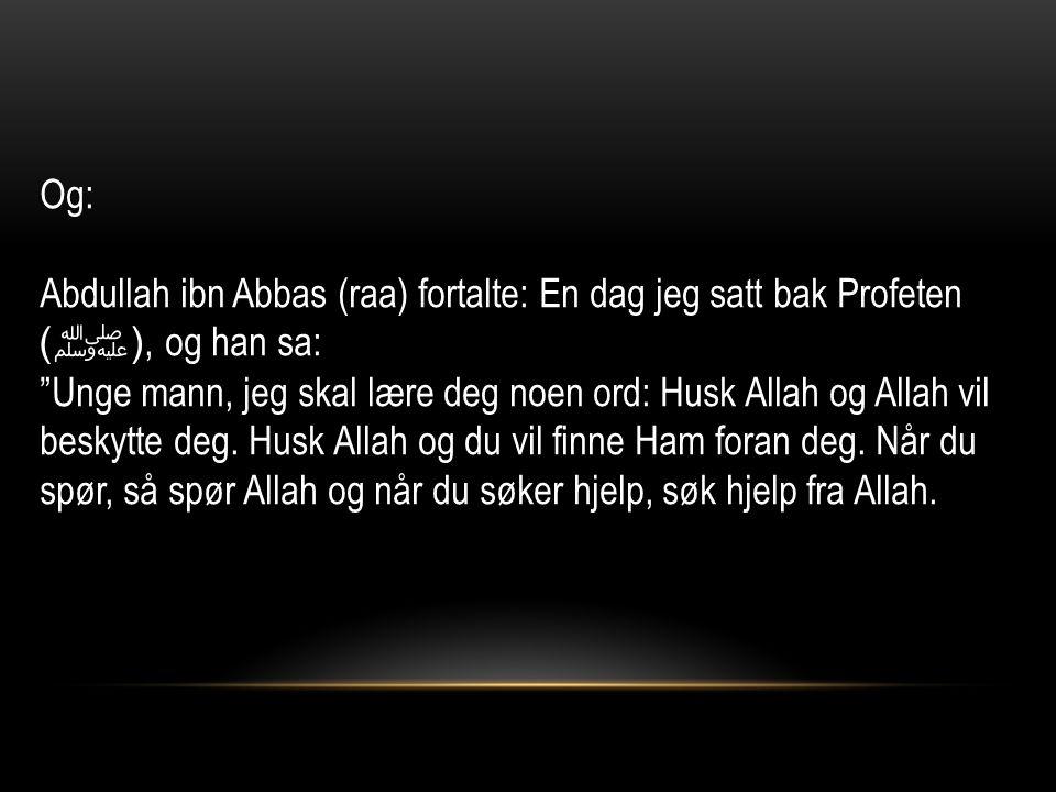 Og: Abdullah ibn Abbas (raa) fortalte: En dag jeg satt bak Profeten ( ﷺ ), og han sa: Unge mann, jeg skal lære deg noen ord: Husk Allah og Allah vil beskytte deg.