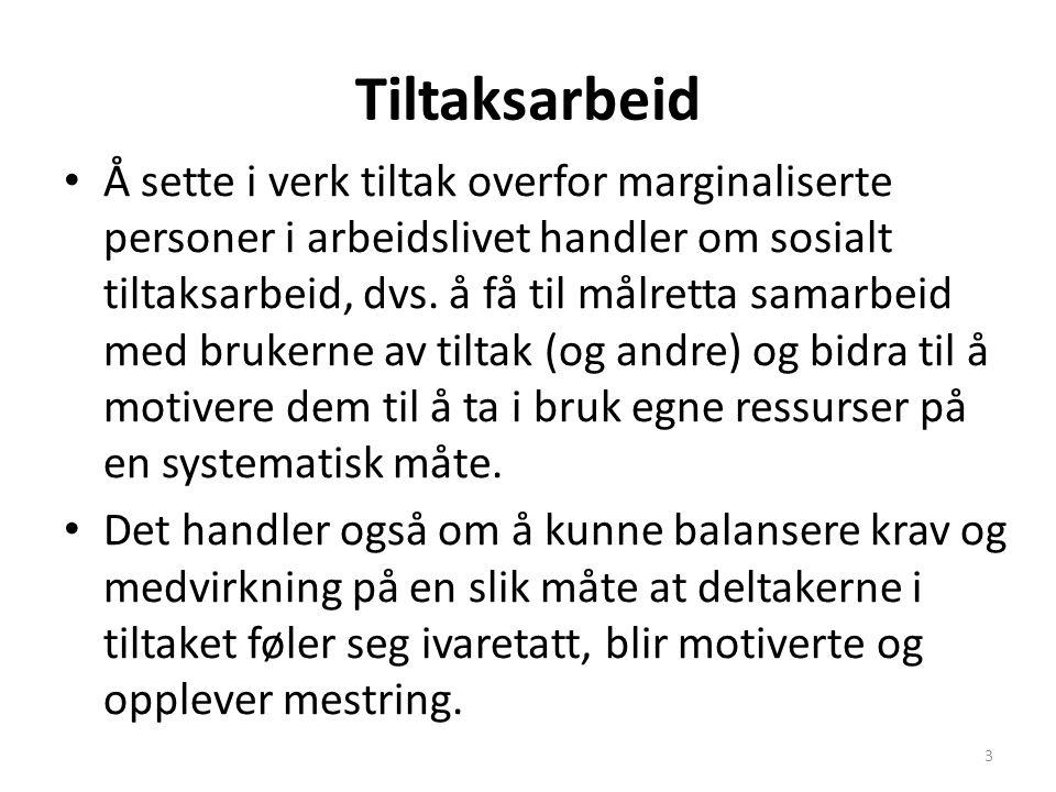Prosjekt sosial integrering av mennesker med psykiske problemer Skal bidra til erfaringsutveksling og samarbeid mellom instanser i Trøndelag og Jämtland om måter å utforme/drive tjenester overfor mennesker med psykiske problemer på.