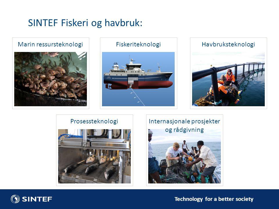 Technology for a better society Marin ressursteknologi SINTEF Fiskeri og havbruk: FiskeriteknologiProsessteknologi HavbruksteknologiInternasjonale pro