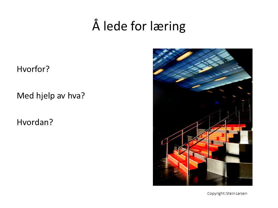 Å lede for læring Hvorfor? Med hjelp av hva? Hvordan? Copyright: Stein Larsen