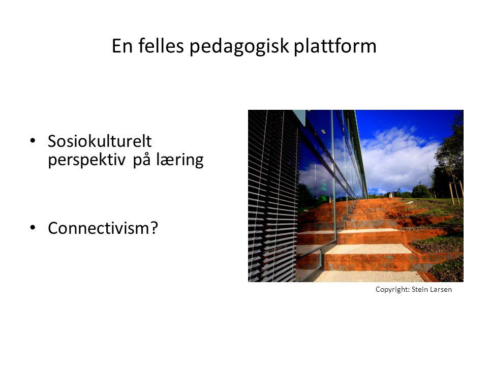 En felles pedagogisk plattform • Sosiokulturelt perspektiv på læring • Connectivism? Copyright: Stein Larsen