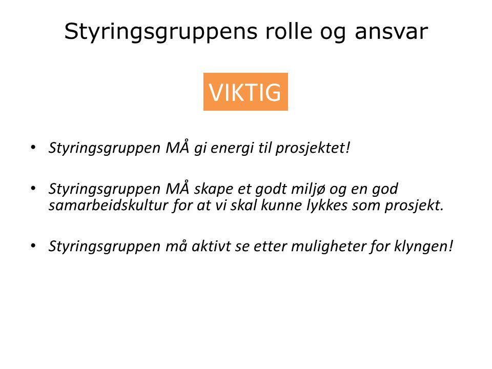 Styringsgruppens rolle og ansvar • Styringsgruppen MÅ gi energi til prosjektet.