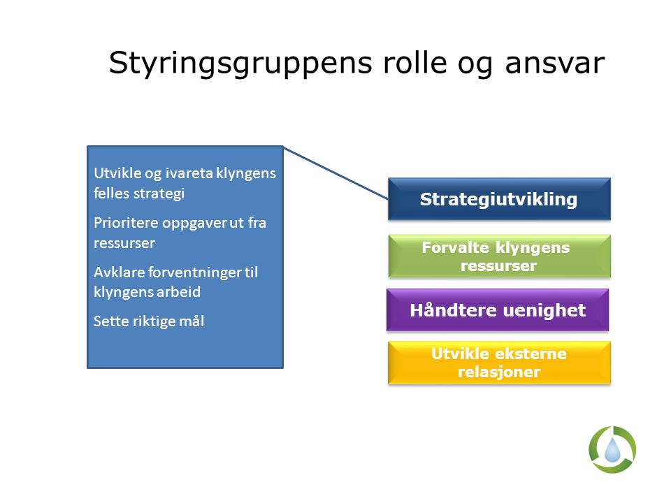 Styringsgruppens rolle og ansvar Strategiutvikling Forvalte klyngens ressurser Forvalte klyngens ressurser Håndtere uenighet Utvikle eksterne relasjon