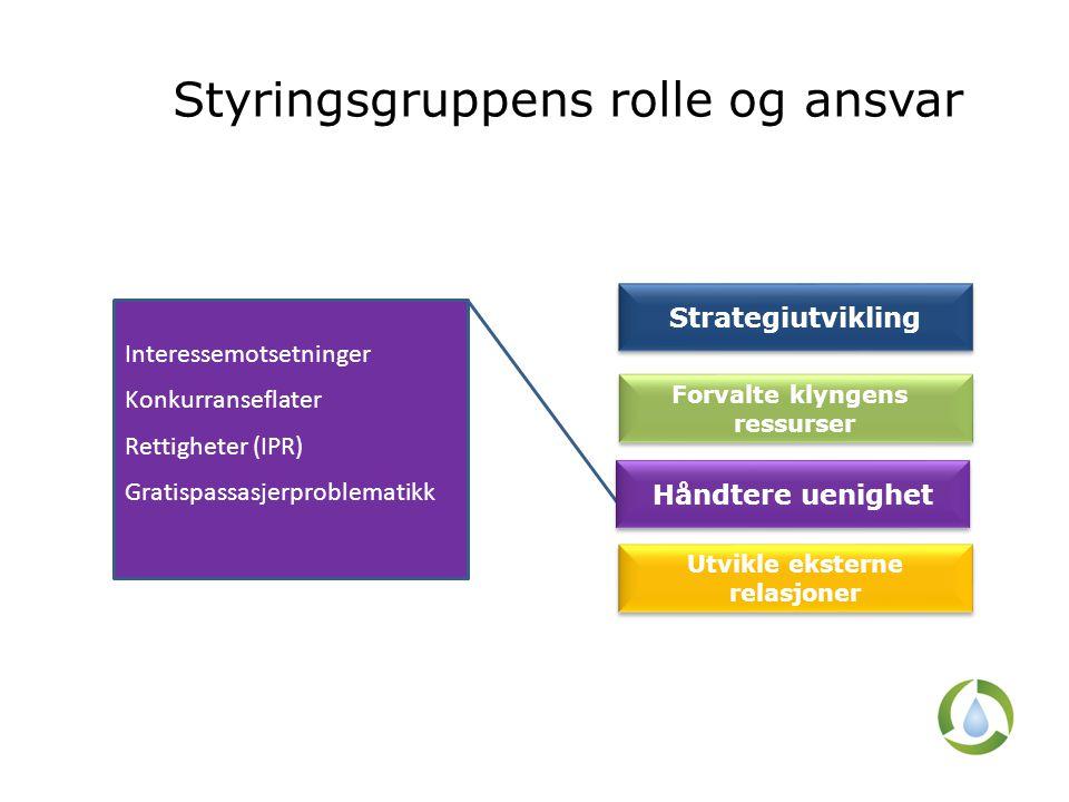 Styringsgruppens rolle og ansvar Interessemotsetninger Konkurranseflater Rettigheter (IPR) Gratispassasjerproblematikk Strategiutvikling Forvalte klyn