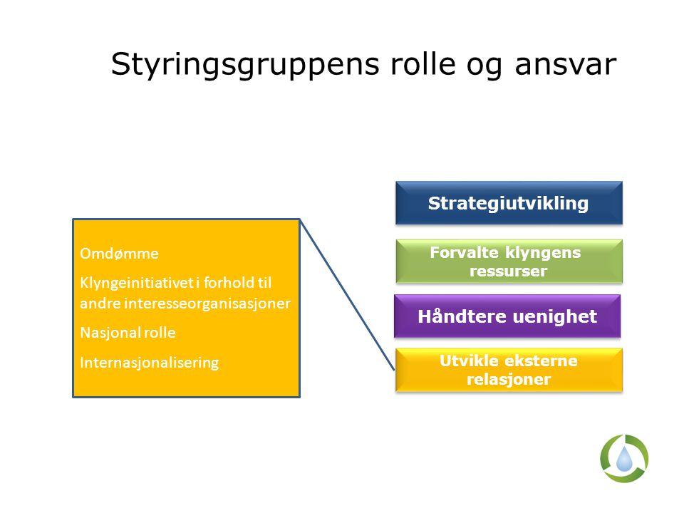 Styringsgruppens rolle og ansvar Omdømme Klyngeinitiativet i forhold til andre interesseorganisasjoner Nasjonal rolle Internasjonalisering Strategiutv