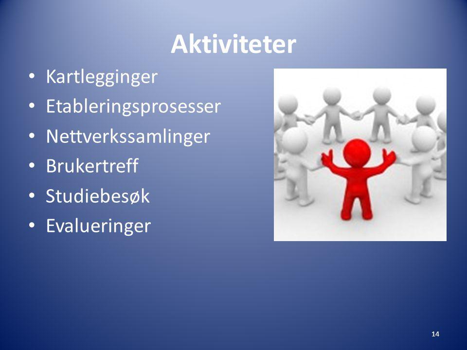 Aktiviteter • Kartlegginger • Etableringsprosesser • Nettverkssamlinger • Brukertreff • Studiebesøk • Evalueringer 14