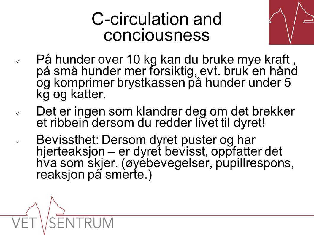 C-circulation and conciousness  På hunder over 10 kg kan du bruke mye kraft, på små hunder mer forsiktig, evt. bruk en hånd og komprimer brystkassen