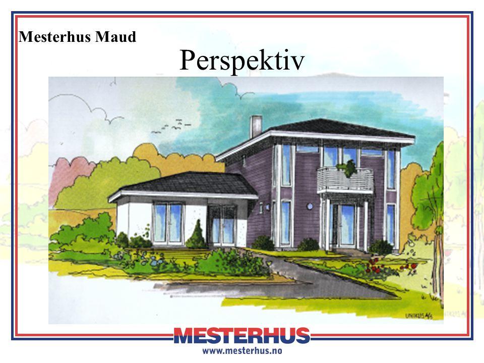 Mesterhus Maud Perspektiv