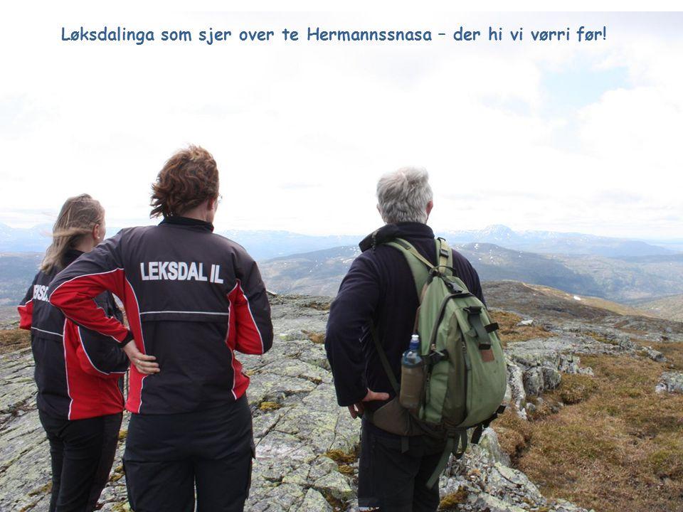 Løksdalinga som sjer over te Hermannssnasa – der hi vi vørri før!