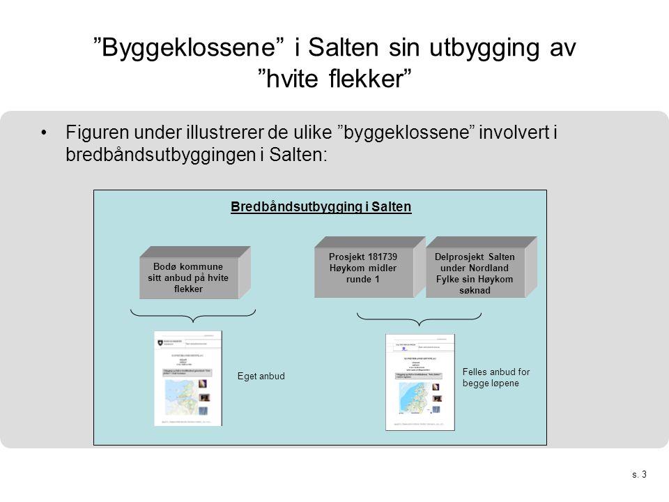 """s. 3 """"Byggeklossene"""" i Salten sin utbygging av """"hvite flekker"""" •Figuren under illustrerer de ulike """"byggeklossene"""" involvert i bredbåndsutbyggingen i"""