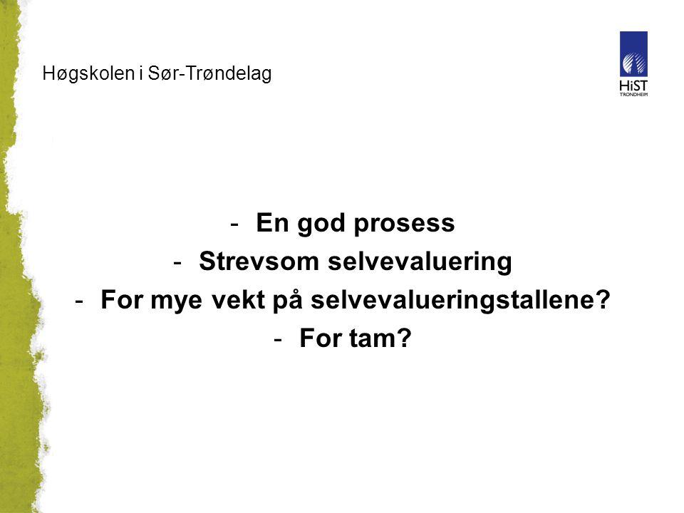 Høgskolen i Sør-Trøndelag -En god prosess -Strevsom selvevaluering -For mye vekt på selvevalueringstallene.