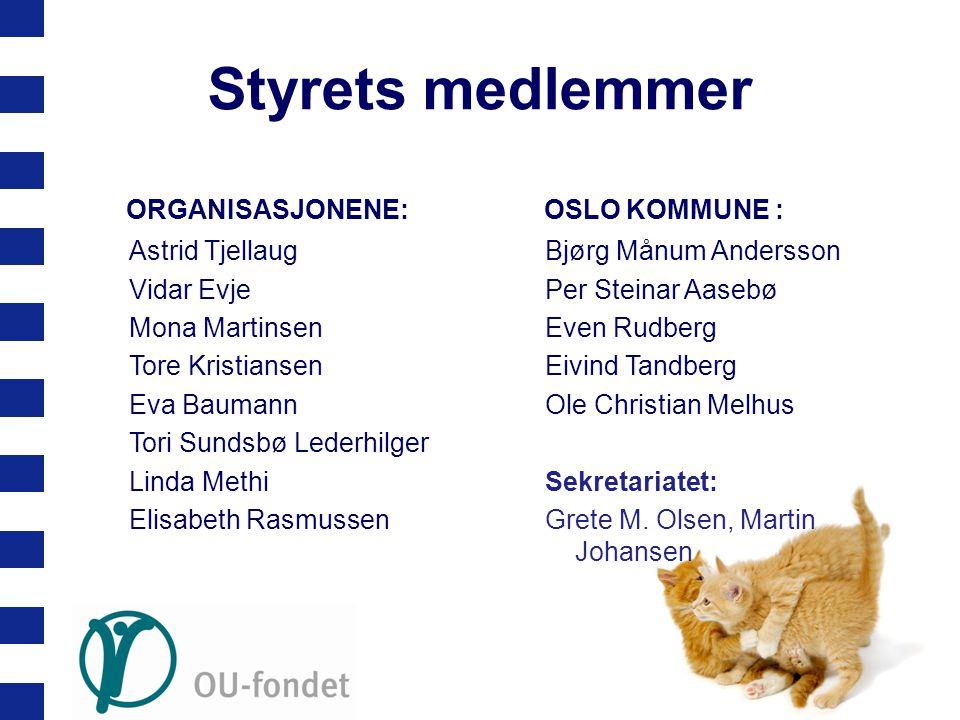 Styrets medlemmer ORGANISASJONENE: Astrid Tjellaug Vidar Evje Mona Martinsen Tore Kristiansen Eva Baumann Tori Sundsbø Lederhilger Linda Methi Elisabe