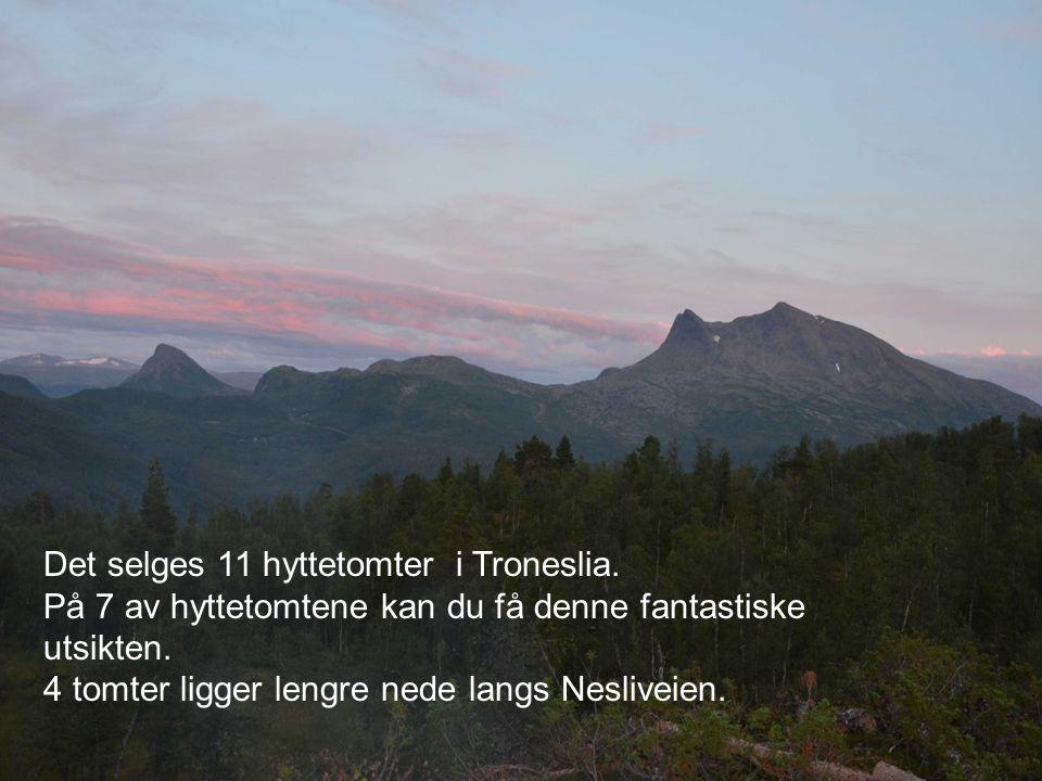 Det selges 11 hyttetomter i Troneslia. På 7 av hyttetomtene kan du få denne fantastiske utsikten. 4 tomter ligger lengre nede langs Nesliveien.