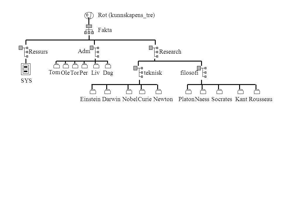 Rot (kunnskapens_tre) Fakta Adm Research Tom Ole Einstein TorPerDagLivtekniskfilosofi DarwinNobelCurieNewtonPlatonNaessSocratesKantRousseau Ressurs SYS