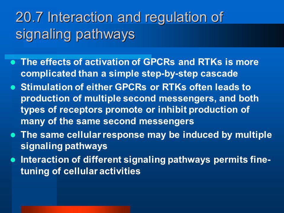 To-komponent signaliseringsvei som tillater kjemotakse- reseptorer å kontrollere flagellbevegelse ved kjemotakse