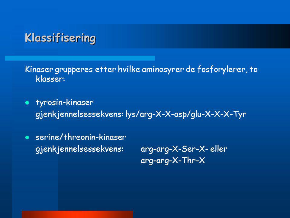 Klassifisering Kinaser grupperes etter hvilke aminosyrer de fosforylerer, to klasser:  tyrosin-kinaser gjenkjennelsessekvens: lys/arg-X-X-asp/glu-X-X-X-Tyr  serine/threonin-kinaser gjenkjennelsessekvens: arg-arg-X-Ser-X- eller arg-arg-X-Thr-X