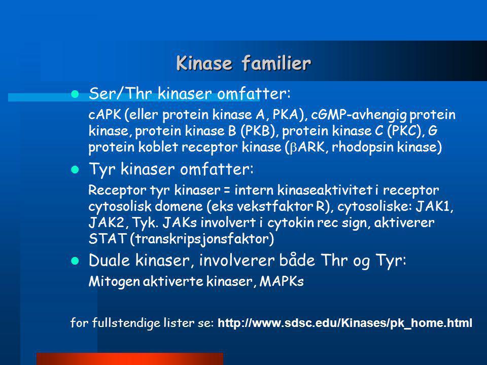 Kinase familier  Ser/Thr kinaser omfatter: cAPK (eller protein kinase A, PKA), cGMP-avhengig protein kinase, protein kinase B (PKB), protein kinase C (PKC), G protein koblet receptor kinase (  ARK, rhodopsin kinase)  Tyr kinaser omfatter: Receptor tyr kinaser = intern kinaseaktivitet i receptor cytosolisk domene (eks vekstfaktor R), cytosoliske: JAK1, JAK2, Tyk.