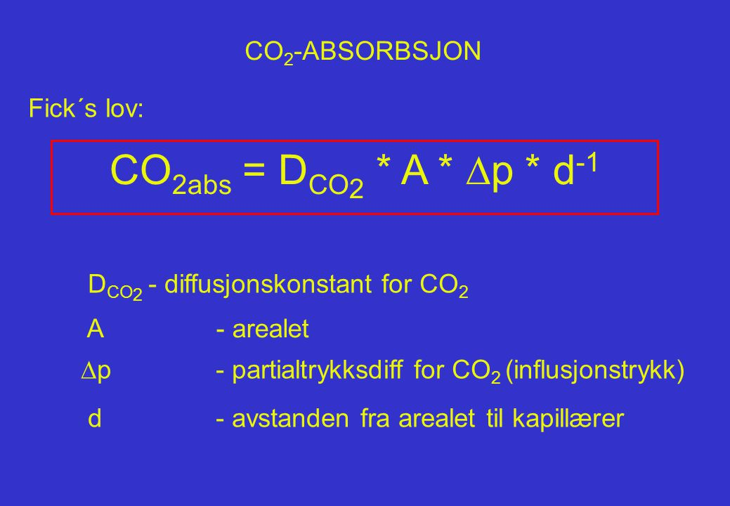 CO 2 -ABSORBSJON Fick´s lov: CO 2abs = D CO 2 * A *  p * d -1 d- avstanden fra arealet til kapillærer D CO 2 - diffusjonskonstant for CO 2  p- parti