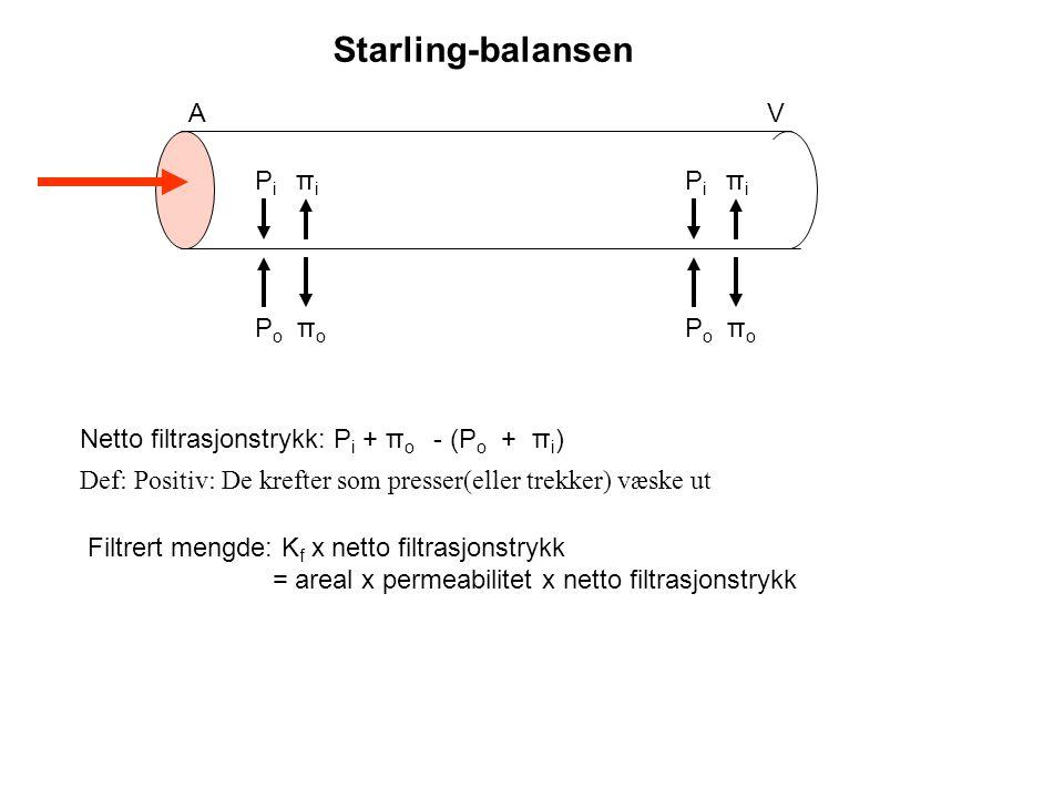 600 ml/min475 ml/min 125 ml/min PAH 1-15 ml/min 599-585 ml/min PAH-clearance = c u.PAH x V c p.PAH = RPF Gjelder bare når T m.PAH ikke er mettet T m.PAH
