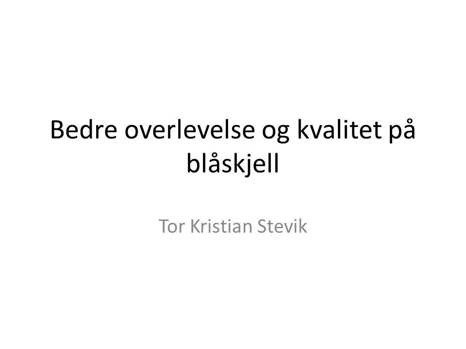 Bedre overlevelse og kvalitet på blåskjell Tor Kristian Stevik
