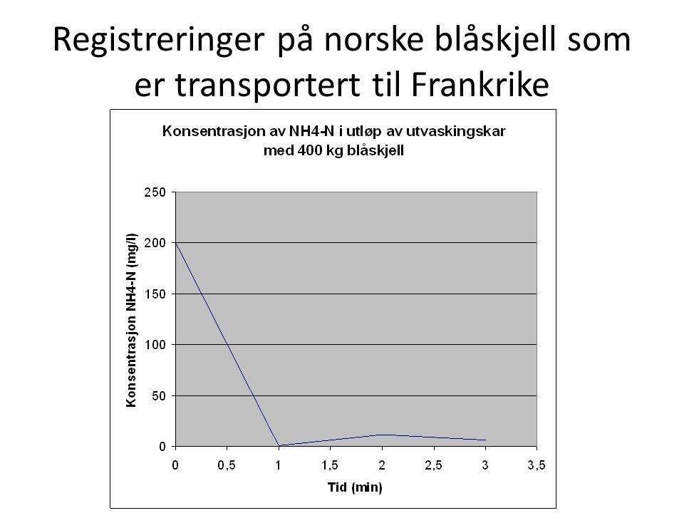 Registreringer på norske blåskjell som er transportert til Frankrike