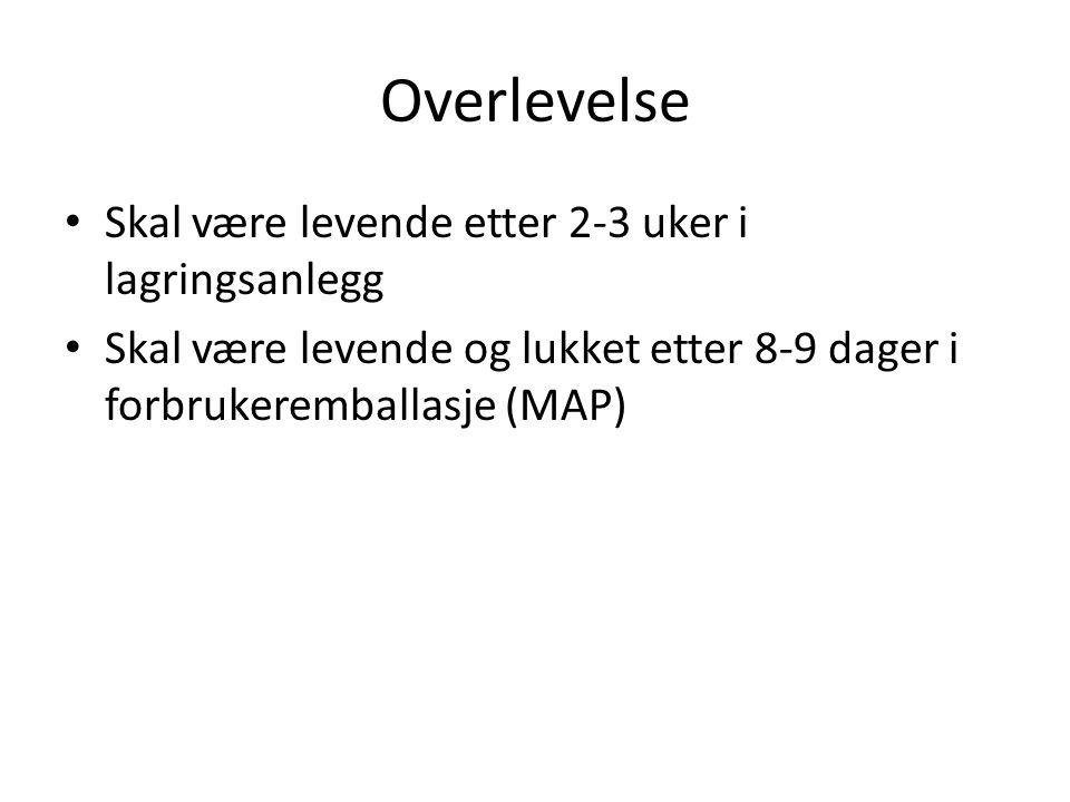 Norsk blåskjell levert til europeiske pakkerier (i Frankrike, Holland og Danmark) har i enkelte perioder av året problem med gaping og høy dødelighet