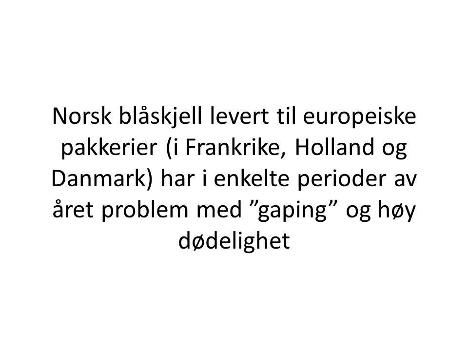 """Norsk blåskjell levert til europeiske pakkerier (i Frankrike, Holland og Danmark) har i enkelte perioder av året problem med """"gaping"""" og høy dødelighe"""